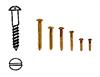RH Brass Screws