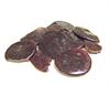 SHELLAC Button
